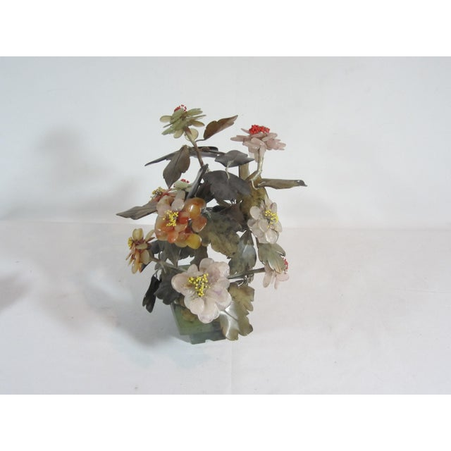 Asian Jade Tree in Planter - Image 4 of 5