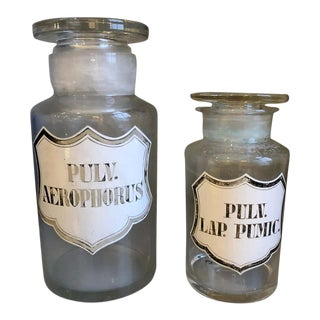 19th Century Apothecary Jars - Set of 2 For Sale