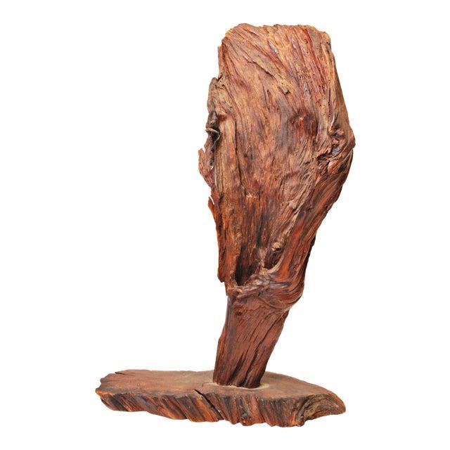 Vintage Driftwood Sculpture - Image 1 of 11