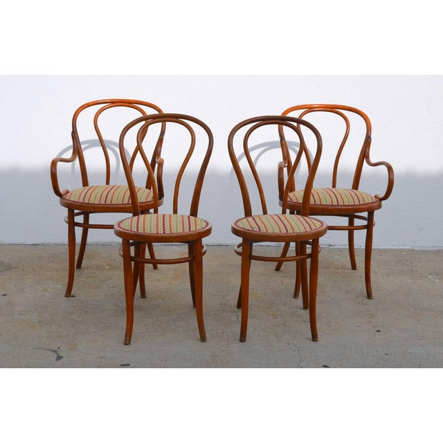 Set of Four Large Slender Bentwood Dining Set by Thonet For Sale - Image 9 of 9