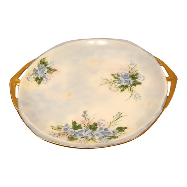 Final Price! Antique Hand Painted Mz Austrian Plate For Sale
