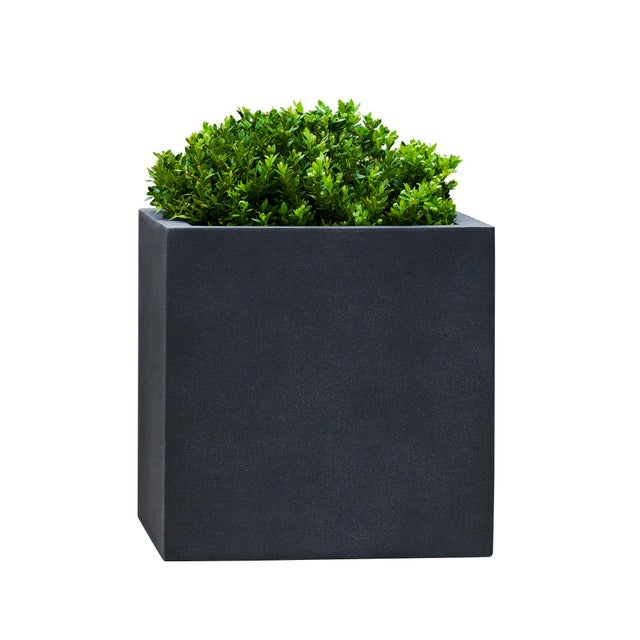 A minimalist planter of Fiber Clay Composite, with a lead lite finish. Available in multiple sizes. This listing is for...