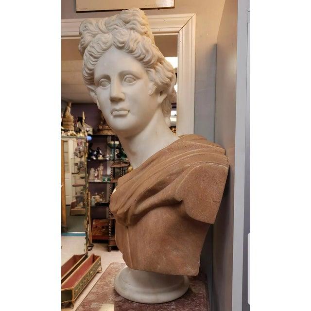 Art Nouveau Italian Art Nouveau Carrara and Salmon Marble Apollo of Belvedere Bust on Rose Marble Pedestal For Sale - Image 3 of 7
