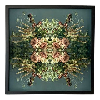 """""""No. 27"""" Contemporary Botanical Limited Edition Photograph, Framed For Sale"""