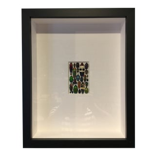 Framed Tropical Beetle Collection in Shadow Box For Sale