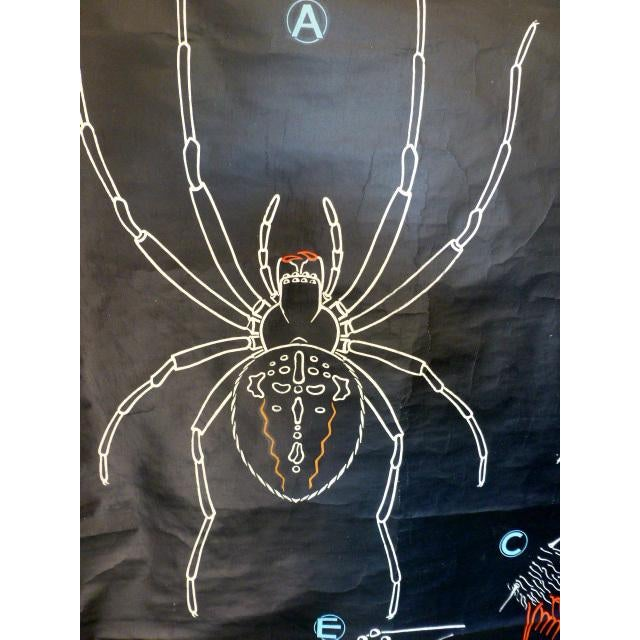 French French Vintage Chalk Plate Garden Spider For Sale - Image 3 of 8