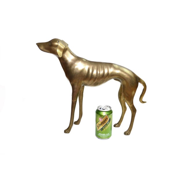 Brass Whippet or Greyhound - Image 6 of 6