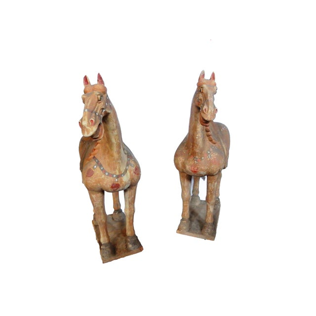 Lg Tang Dynasty-Style Standing Horses - a Pair - Image 4 of 8