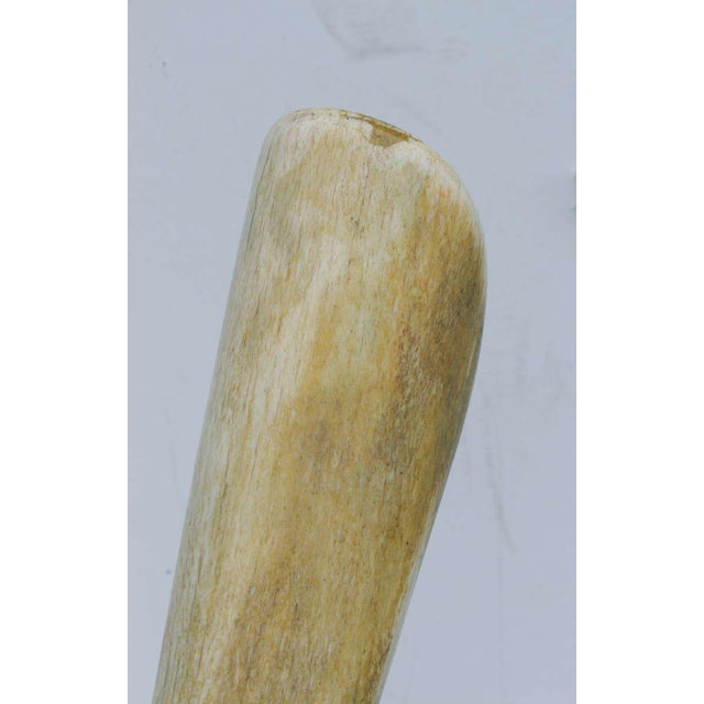 White Alex Taller Abstract Bone Sculpture For Sale - Image 8 of 10