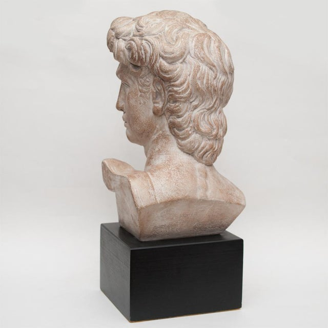 Mid 20th Century Mid Century Ceramic Bust of David For Sale - Image 5 of 13