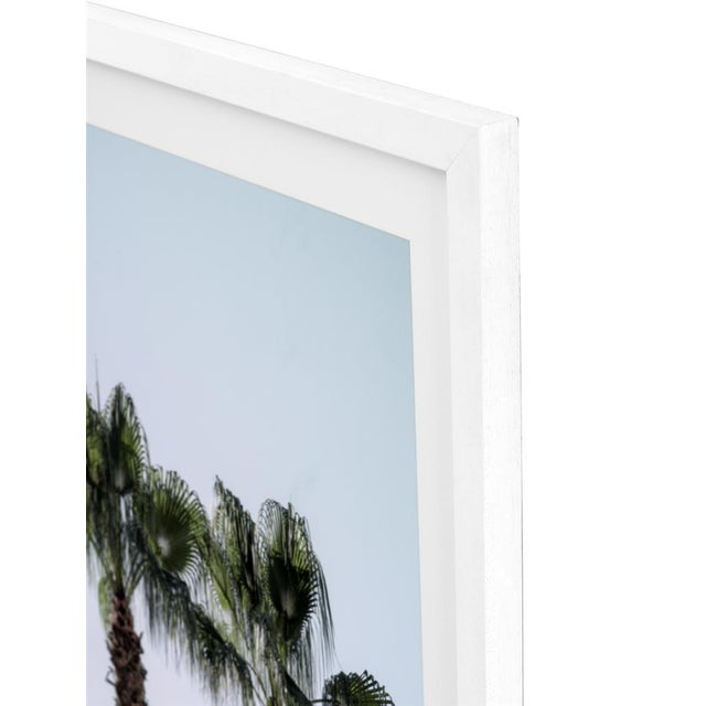 Modern Palm Trees Palms Print (Set of 2) For Sale - Image 3 of 4