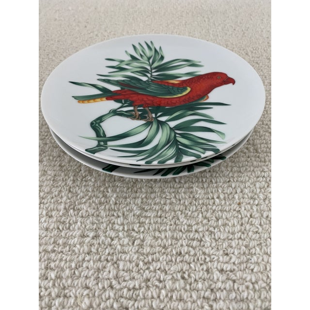 """1970s Vintage Fitz and Floyd Parrot """"Perroquet"""" Dessert or Salad Plates. Set/6 For Sale - Image 5 of 7"""