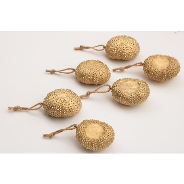 Golden Sea Urchin Ornaments - Set of 6 For Sale - Image 4 of 6