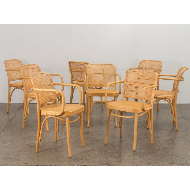 1960s Joseph Hoffman Bentwood Chairs - Set of 8 For Sale - Image 5 of 11