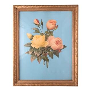 Vintage Framed Rose & Turquoise Floral Print For Sale