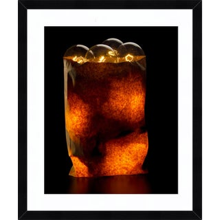 """""""Bag of Bulbs"""" Contemporary Photograph by John Manno, Framed For Sale"""