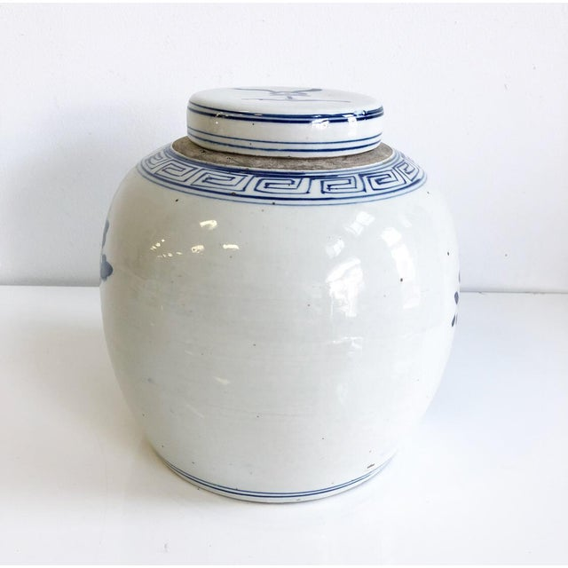 Blue & White Chinoiserie Ginger Jar With Lid Bird in Flowering Tree Design Scene For Sale - Image 4 of 7