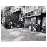 Image of Peter Mayer, New York City Deli With Dogs, Gelatin Silver Print For Sale