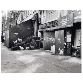 Peter Mayer, New York City Deli With Dogs, Gelatin Silver Print For Sale