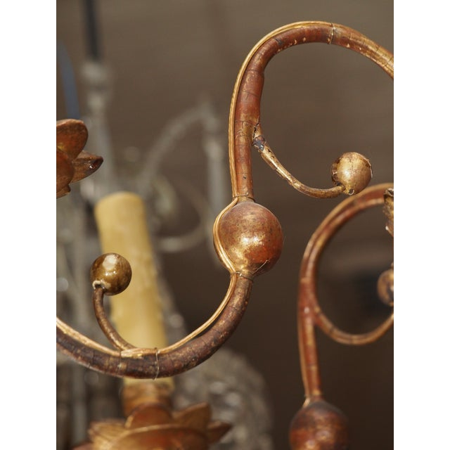 Early 19th Century Italian Giltwood Chandelier For Sale - Image 9 of 9