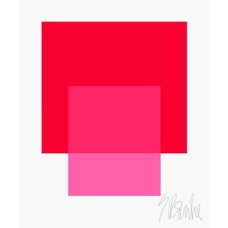 """The Interaction of Red and Bright Pink Fine Art Print 45"""" X 55"""" by Liz Roache For Sale"""