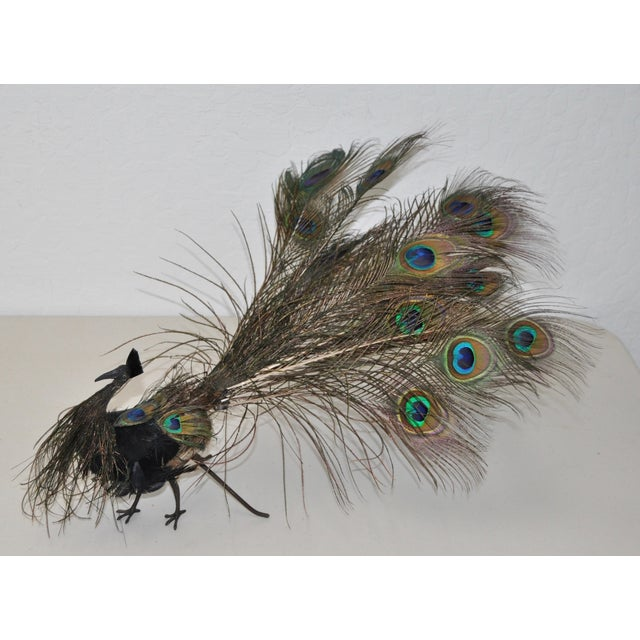 Late 19th-C. Peacock Centerpiece - Image 2 of 8