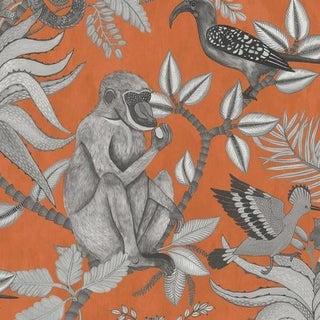 Cole & Son Savuti Wallpaper Roll - Orange For Sale