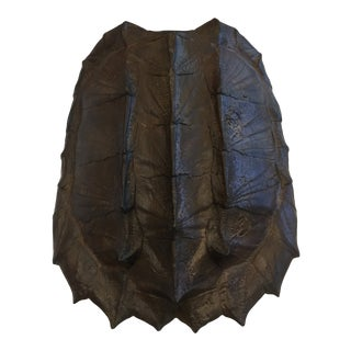 Alligator Snapping Turtle Shell Replica Wall Decor For Sale