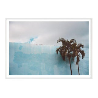 """""""Blue Palm"""" Unframed Photographic Print For Sale"""