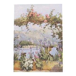 1905 Original Italian Print - Italian Travel Colour Plate - a Garden at Cadenabbia, Lago DI Como For Sale