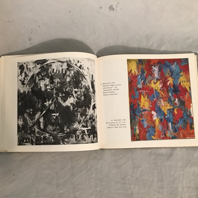 White Jasper Johns by Max Kozloff For Sale - Image 8 of 11