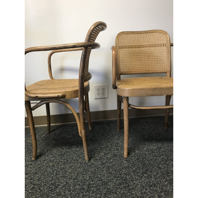 Mid-Century Modern Vintage Thonet Hoffman Prague Cane & Bentwood Chairs - Set of 4 For Sale - Image 3 of 4