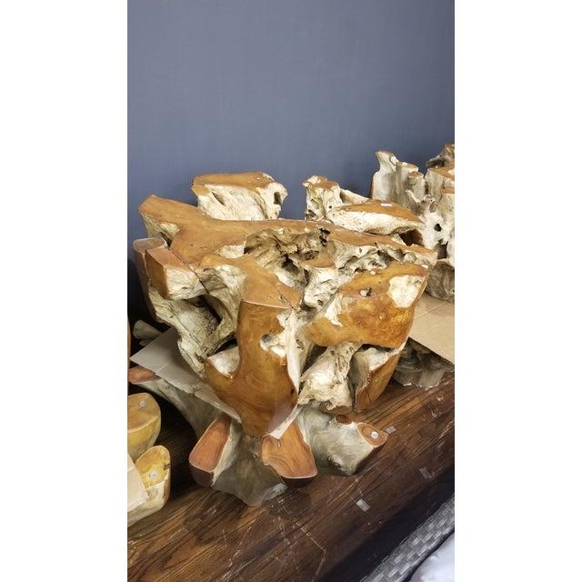 Organic Modern Tera Teak Wood Coffee Table For Sale In New York - Image 6 of 8