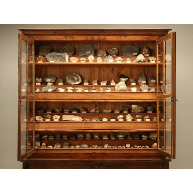 French Specimen Cabinet or Bookcase, circa 1891 For Sale - Image 11 of 11