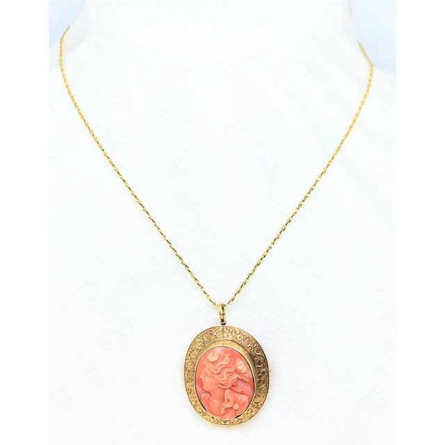 14k Gold & Coral Cameo Brooch/Necklace For Sale - Image 9 of 9