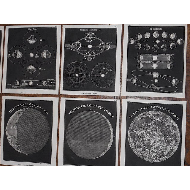 Antique 19th Century Astronomical Lithographs-Celestial Maps/Charts-Set of 13 For Sale - Image 4 of 7