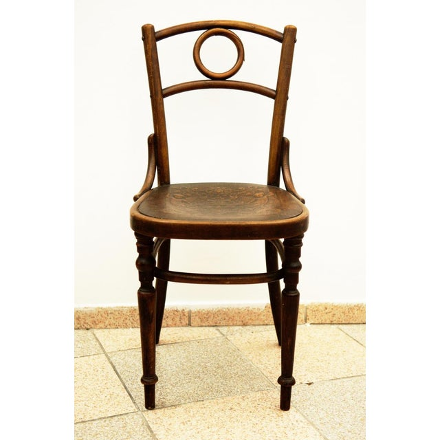 Austrian bentwood chair For Sale - Image 11 of 11