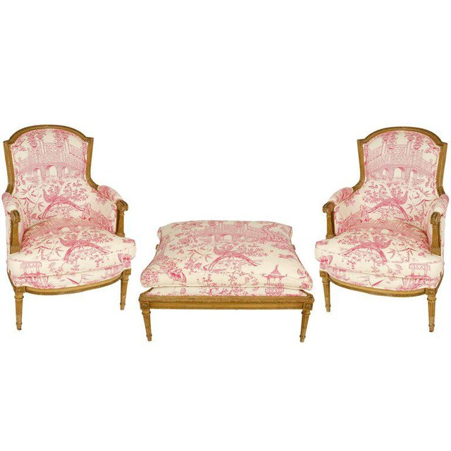 Early 20th Century Pair of Louis XVI Style Bergères with Ottoman For Sale - Image 5 of 5