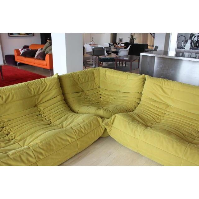 Contemporary Late 20th Century Ligne Roset 3-Piece Yellow Sofa For Sale - Image 3 of 5