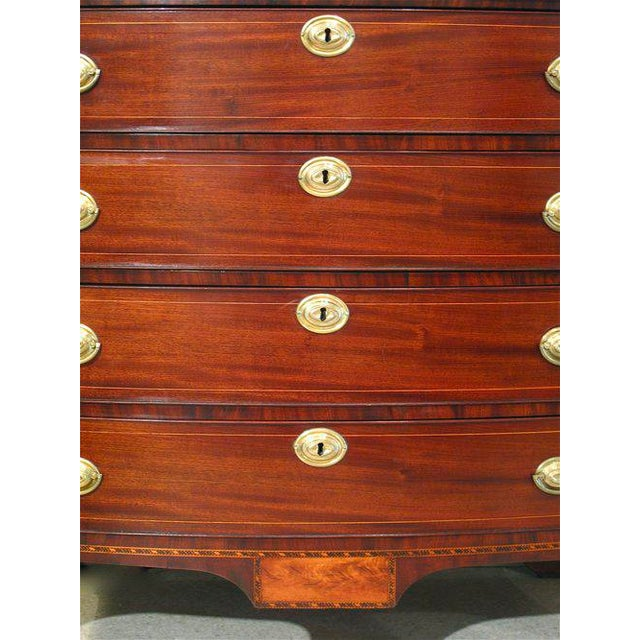 Birch Portsmouth, New Hampshire Federal Chest of Drawers For Sale - Image 7 of 11