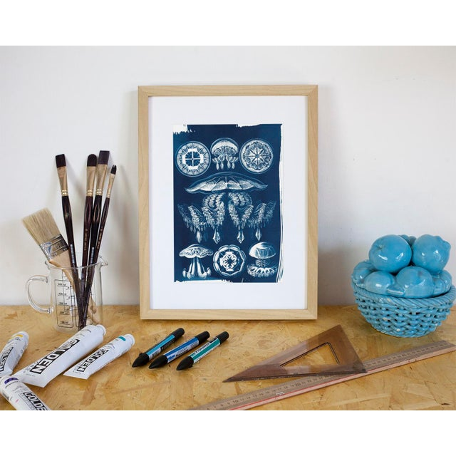 Jellyfish Anatomical Drawing by Ernst Haeckel, Cyanotype Print, A4 Size (Limited Edition) - Image 3 of 5