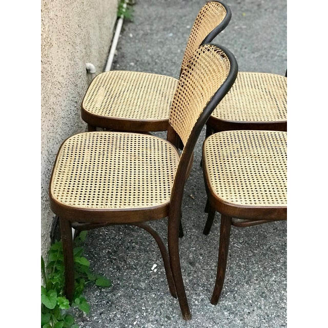 1930s 1930s Vintage Thonet Caned Cafe Chairs- Set of 4 For Sale - Image 5 of 9