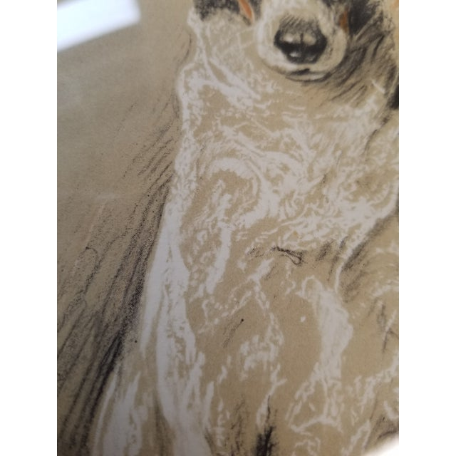 Fox Terrier Pastel Conte Drawing For Sale - Image 4 of 6