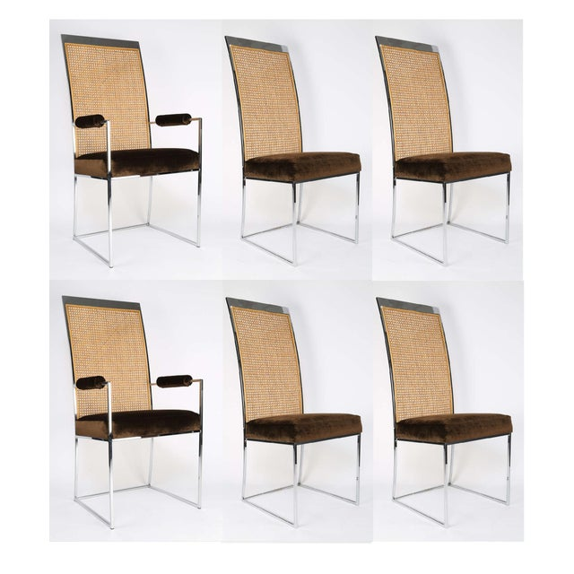 Six High Back Cane Dining Chairs by Milo Baughman for Thayer Coggin For Sale - Image 11 of 11