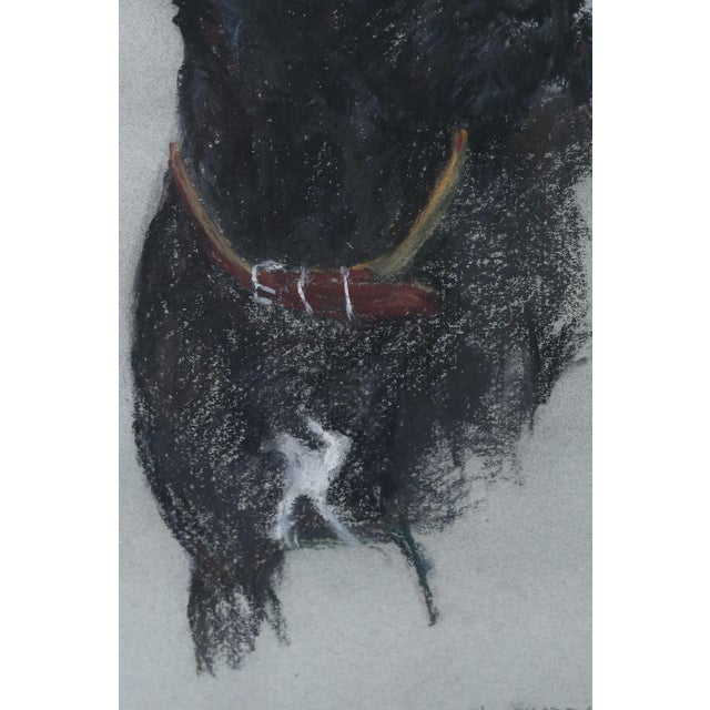 Labrador Retriever Original Pastel Drawing - Image 4 of 6