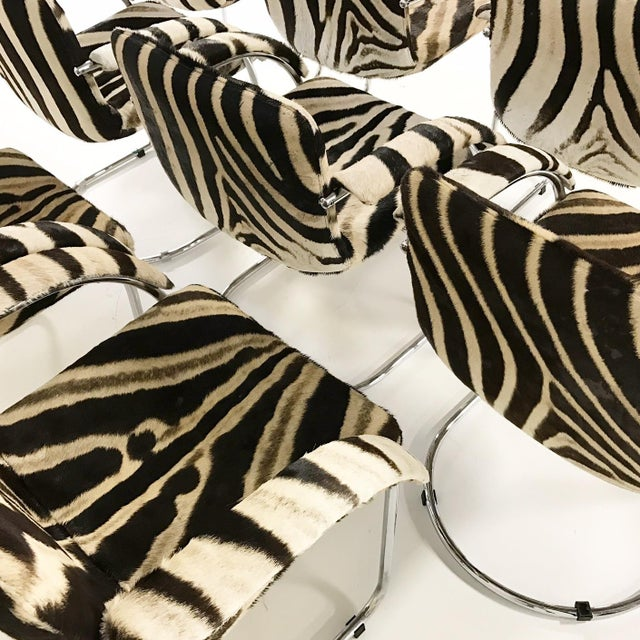 Giovanni Offredi for Saporiti Lens Chairs in Zebra - Set of 8 - Image 8 of 11
