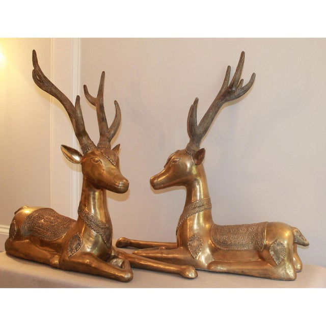 Large Vintage Recumbent Brass Stags / Deer - a Pair For Sale - Image 4 of 9