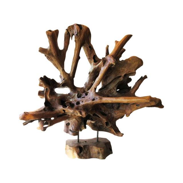 Mid-Century Modern Petrified Organic Wood Sculpture For Sale