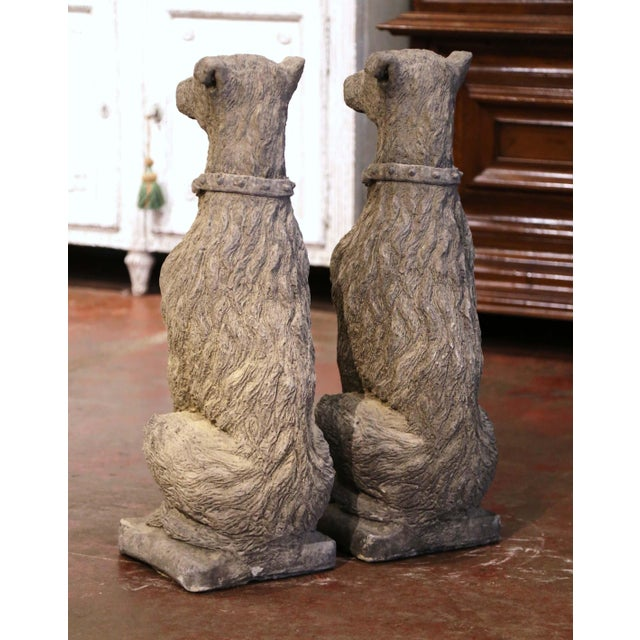 Vintage French Weathered Carved Stone Statuary Scottish Deer Hounds - a Pair For Sale - Image 9 of 11