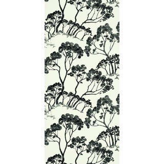 Sample - Schumacher Timber ! Wallpaper in Black & White Preview